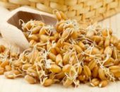 Миниатюра к статье Проросшая пшеница лечит весь организм