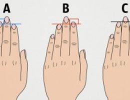 Миниатюра к статье Что длина пальцев руки говорит о вашем характере