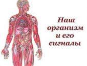 Миниатюра к статье Наш организм и его сигналы.