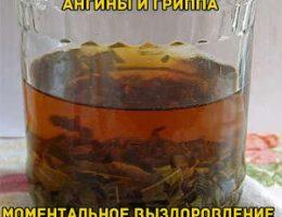 Миниатюра к статье Монгольский рецепт лечения гриппа и ангины