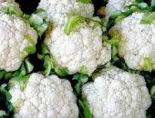 Миниатюра к статье Выращиваем цветную капусту