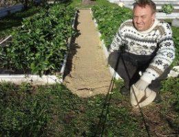 Миниатюра к статье Как сделать, чтобы в проходах между грядками трава не росла